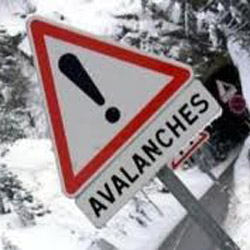 Avalanche Foundation